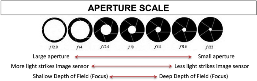 Electronics How Camera Aperture Works Howthingswork
